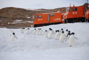 南極ごかい越冬男